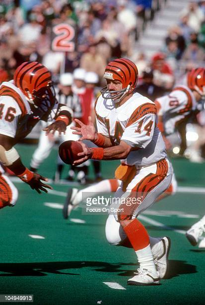 Quarterback Ken Anderson of the Cincinnati Bengals turns to hand the ball off to running back Pete Johnson against the Philadelphia Eagles during an...