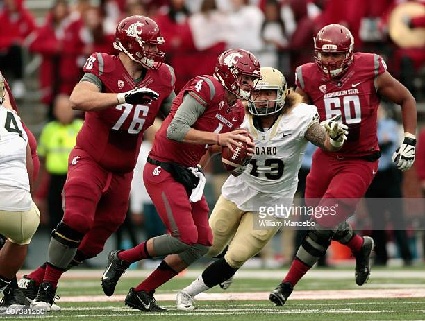 Quarterback Luke Falk of the Washington State Cougars carries the ball against Kevin Shelton of the Idaho Vandals while being guarded by Cody...