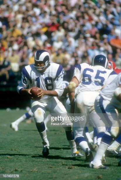 Quarterback Roman Gabriel of the Los Angeles Rams drops back to pass against the Atlanta Falcons during an NFL football game at Atlanta-Fulton County...