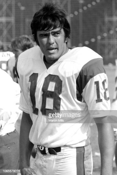 Quarterback Roman Gabriel of the Los Angeles Rams stands on the sidelines during an NFL game against the San Diego Chargers on October 4, 1970 at the...