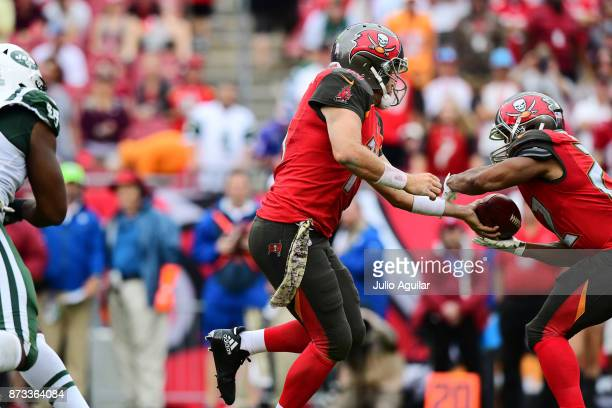 Quarterback Ryan Fitzpatrick of the Tampa Bay Buccaneers hands the ball off to running back Doug Martin against the New York Jets in the fourth...