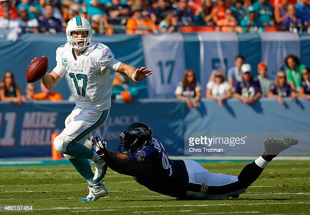quarterback Ryan Tannehill of the Miami Dolphins looks for a receiver in the second quarter as nose tackle Brandon Williams of the Baltimore Ravens...