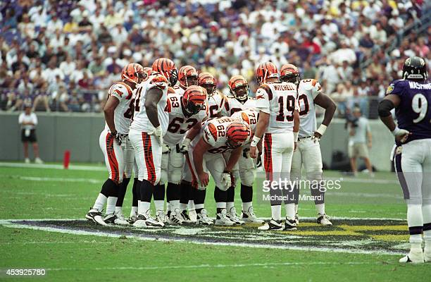 Quarterback Scott Mitchell of the Cincinnati Bengals calls for a huddle before a play during a NFL game against the Baltimore Ravens at PSINet...