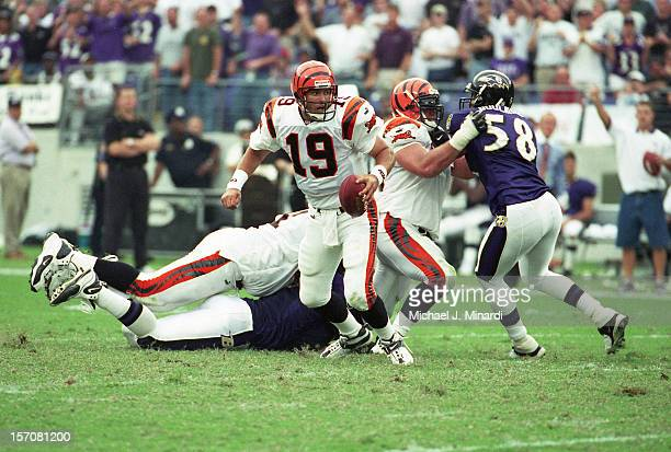 Quarterback Scott Mitchell of the Cincinnati Bengals tries to get out of the pocket during a game against the Baltimore Ravens at PSINet Stadium on...