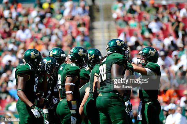Quarterback Steven Bench of the South Florida Bulls controls the offense against the Miami Hurricanes on September 28 2013 at Raymond James Stadium...