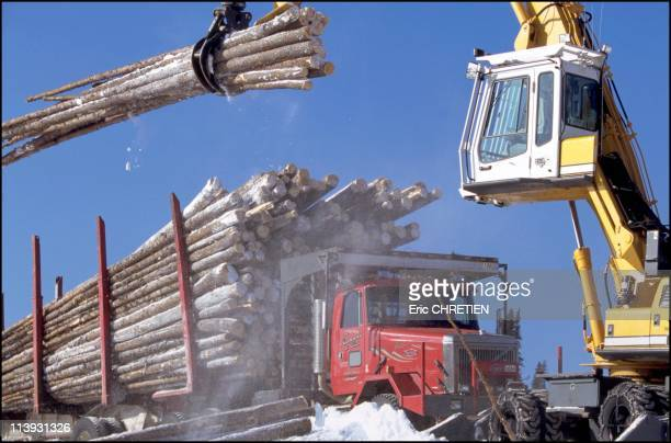 Quebec the 'iced' truckers of Saguenay In Quebec Canada In December 2000The operator of the loading machine uses the huge claw of his machine with...