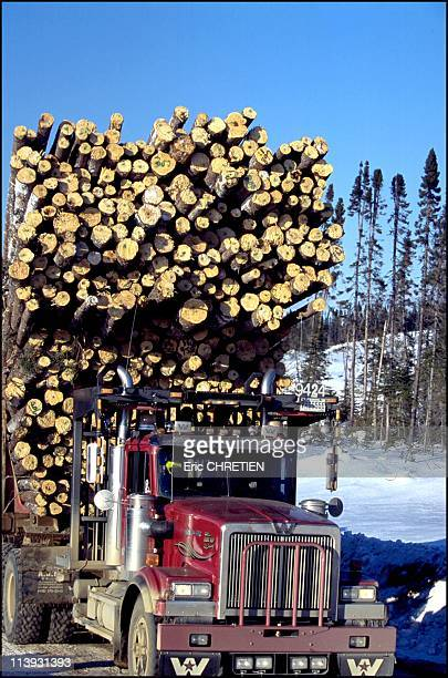 Quebec the 'iced' truckers of Saguenay In Quebec Canada In December 2000Logging companies pay 7 to 11 Canadian dollars per ton of timber transported...