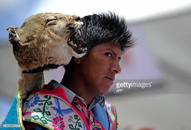 A Quechua indigenous man performs a traditional dance during celebrations for the arrival of motorcycles and quads of the 2014 Rally Dakar stage 7 in...