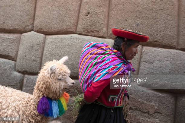 Quechua woman leads her Alpaca along an Inca stone lined alleyway on May 24, 2018 in Cusco, Peru. Cusco was the capital of the Inca Empire between...