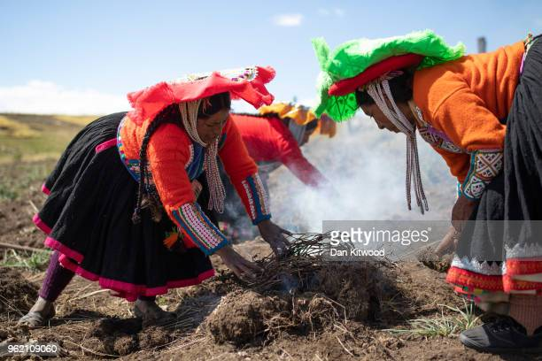 Quechua women prepare cooked potatoes to eat on May 23, 2018 in Tinki, Peru. Many Quechua families, especially women in high altitude isolated...