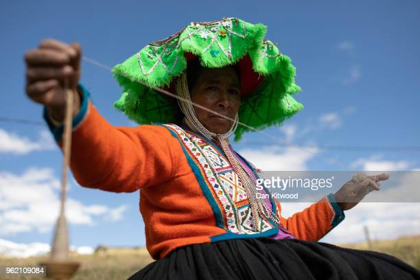 Quechua women spins yarn from baby Alpaca on May 23, 2018 in Tinki, Peru. Many Quechua families, especially women in high altitude isolated...