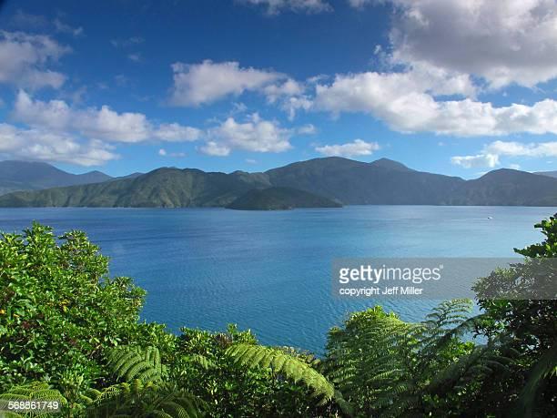 Queen Charlotte Sound, Blumine island, New Zealand