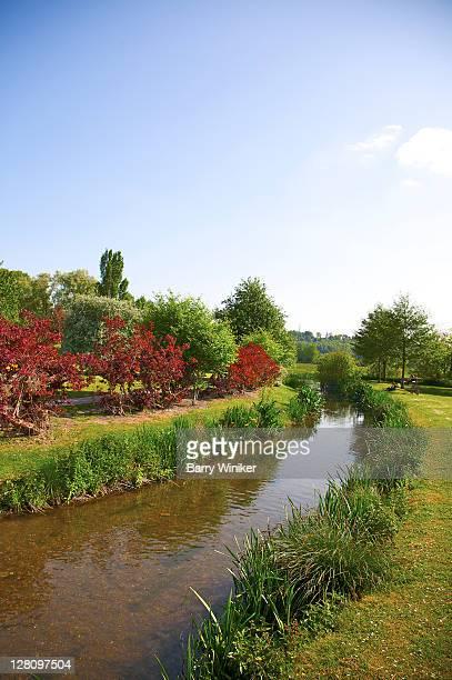 Queen Elizabeth Gardens and River Avon, chalk river system, Site of Specific Scientific Interest, Salisbury, United Kingdom
