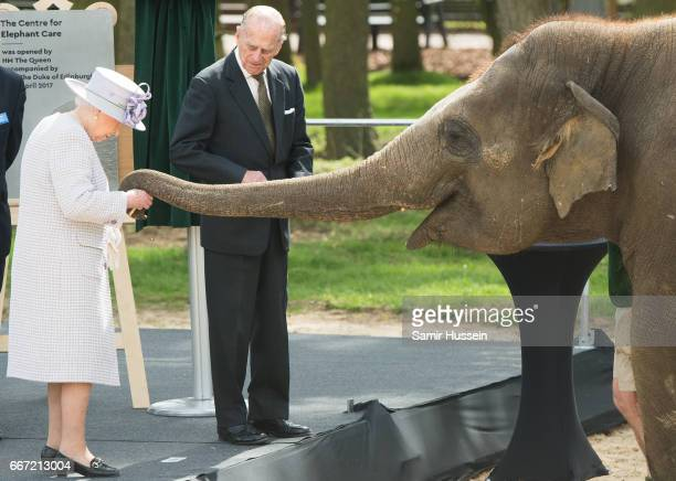 Queen Elizabeth II and Prince Philip Duke of Edinburgh feed Donna the elephant a banana as they visit the ZSL Whipsnade Zoo at the Elephant Centre on...