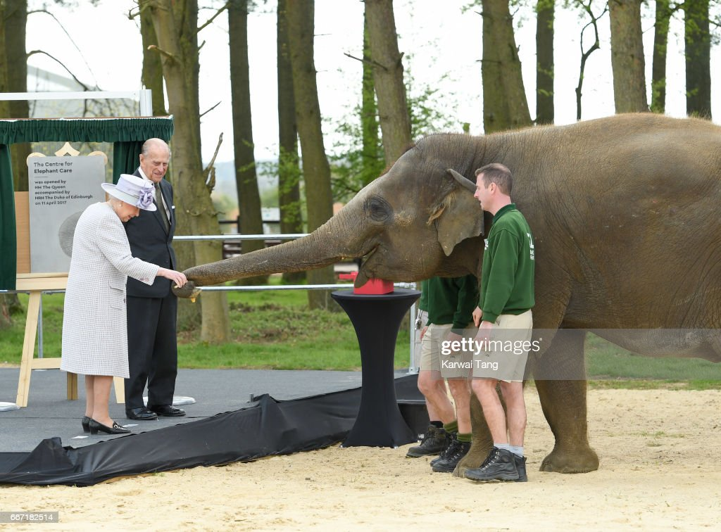 Queen Elizabeth II and Prince Philip, Duke of Edinburgh feeds Donna the elephant during the opening the new Centre for Elephant Care at ZSL Whipsnade Zoo on April 11, 2017 in Dunstable, United Kingdom.