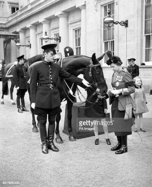 Queen Elizabeth II gives sugar to the police horse Burmese who is at Buckingham Palace after the Trooping the Colour Hidden behind the horse is...