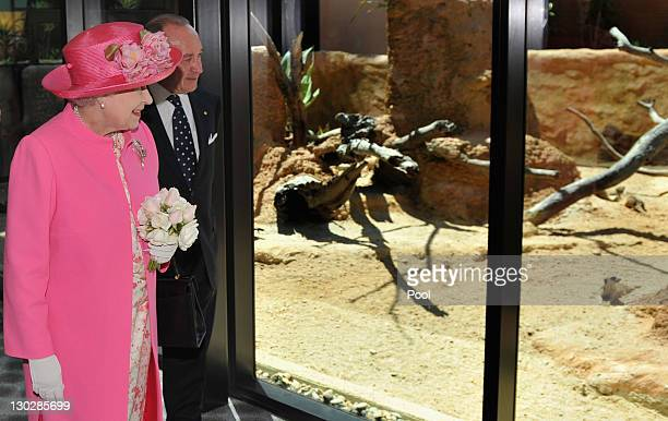 Queen Elizabeth II inspects the Meerkat enclosure with Chairman Tony Beddison at the opening of the new Royal Children's Hospital on October 26 2011...