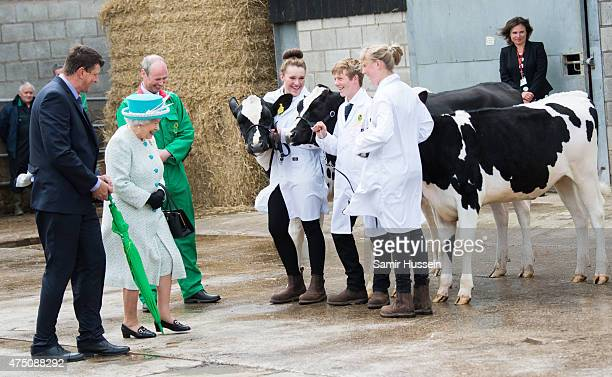 Queen Elizabeth II is shown cows as she visits Myerscough College at Lodge Livery Yard on May 29 2015 in Lancaster England