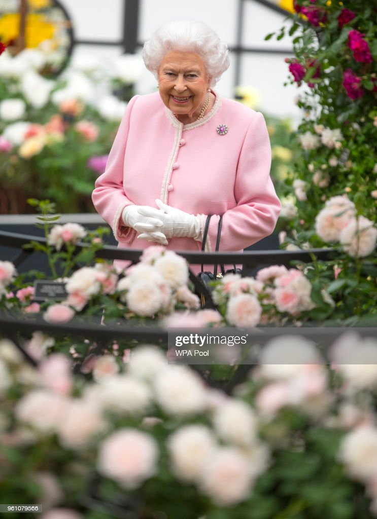 Queen Elizabeth II looks at a display of roses on the Peter Beale roses display at the Chelsea Flower Show 2018 on May 21, 2018 in London, England.