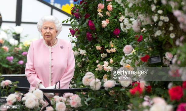 Queen Elizabeth II looks at a display of roses on the Peter Beale roses display at the Chelsea Flower Show 2018 on May 21 2018 in London England