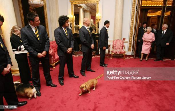 Queen Elizabeth II meets players and officials from the New Zealand Rugby League Team the All Golds inside the Bow Room at Buckingham Palace on...
