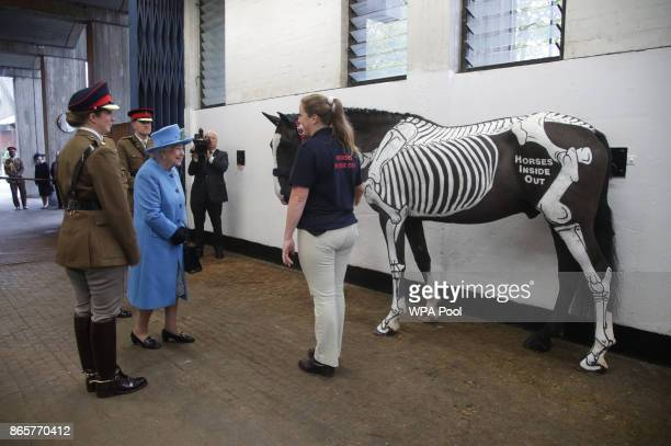 Queen Elizabeth II meets Quinn the 'skeleton' horse as she listens to a briefing on the latest innovations in equine health during her visit to the...