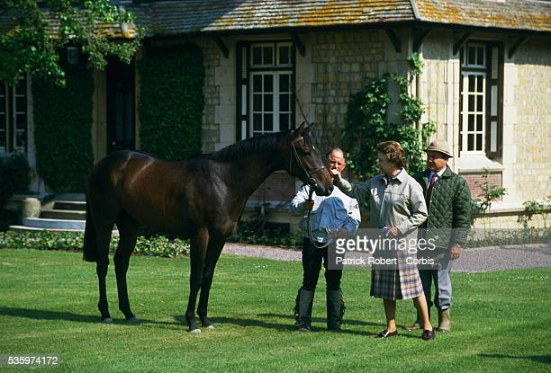 Queen Elizabeth II of Britain examines a horse at Le Quesnay horse farm near Deauville. The Queen visited the stud farm with the intention of buying...