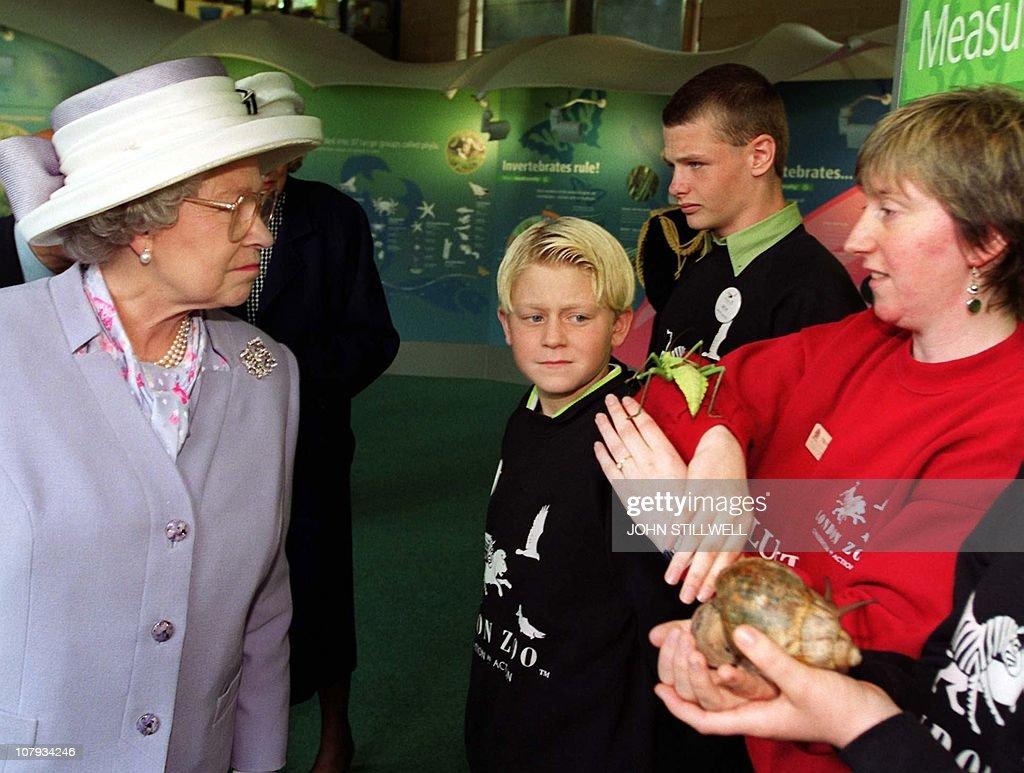 Queen Elizabeth II of England looks at a : ニュース写真