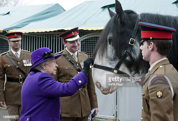 Queen Elizabeth II pets a horse as she meets members of the Household Cavalry at Combermere Barracks on November 26 2012 in Windsor England