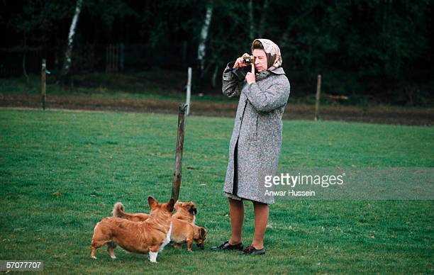 Queen Elizabeth II in Windsor Park photographing her corgis in 1960 in England