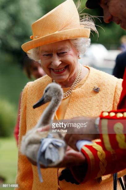 Queen Elizabeth II smiles as she is shown an orphaned cygnet at Oakley Court on the river bank during a swan upping census on the River Thames on...