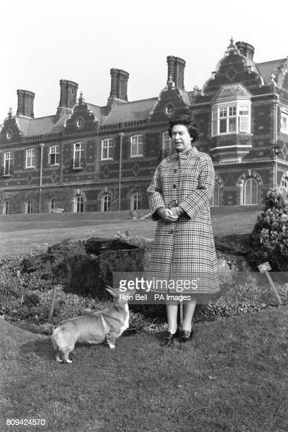 Queen Elizabeth II with a corgi in the grounds of Sandringham House, Norfolk, to mark the 30th anniversary of the Queen's accession to the throne.