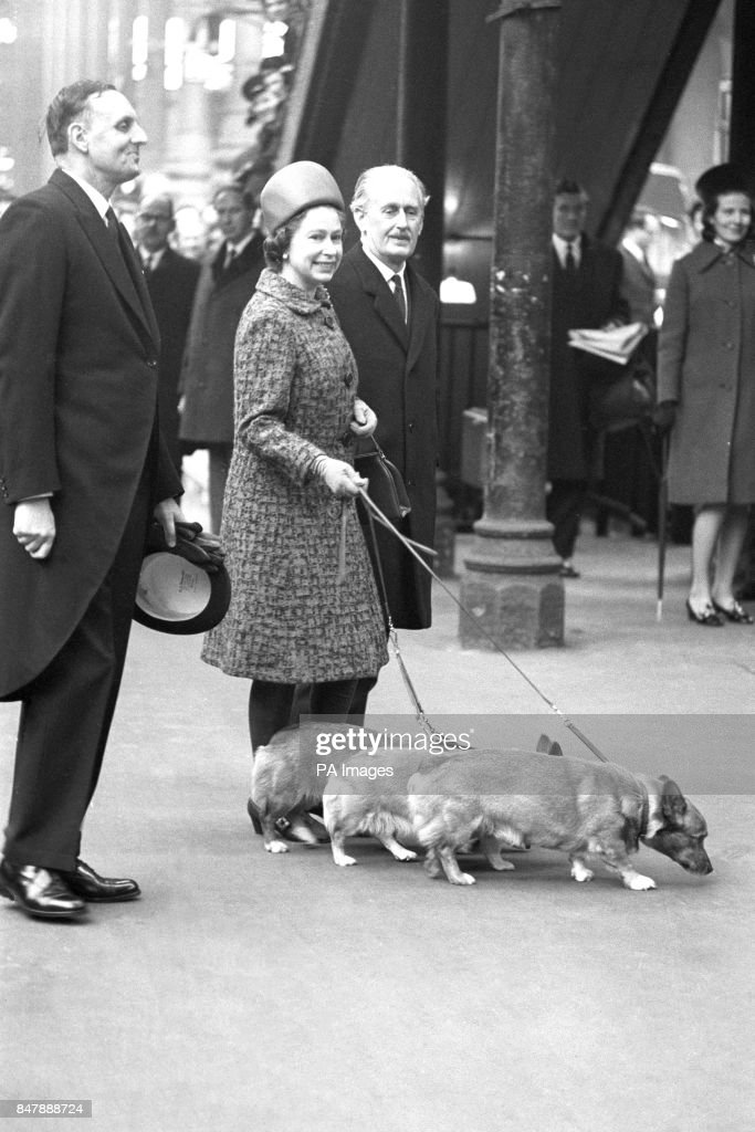 queen-elizabeth-ii-with-her-corgis-at-liverpool-street-station-when-picture-id847888724