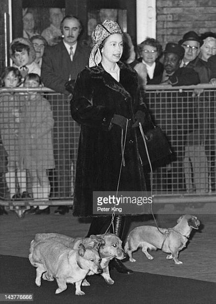 Queen Elizabeth II with her dogs at Liverpool Street Station in London 28th December 1972 She is en route to Sandringham for a family holiday