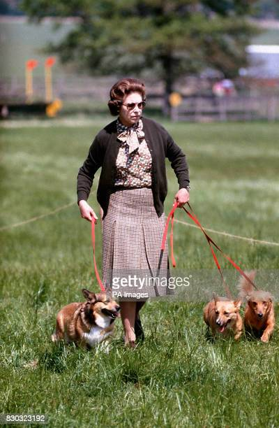 Queen Elizabeth II with some of her corgis walking the Cross Country course during the second day of the Windsor Horse Trials