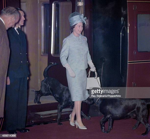 Queen Elizabeth II with two black labradors on leads returning from a holiday at Balmoral Castle in Scotland to King's Cross Station in London on...