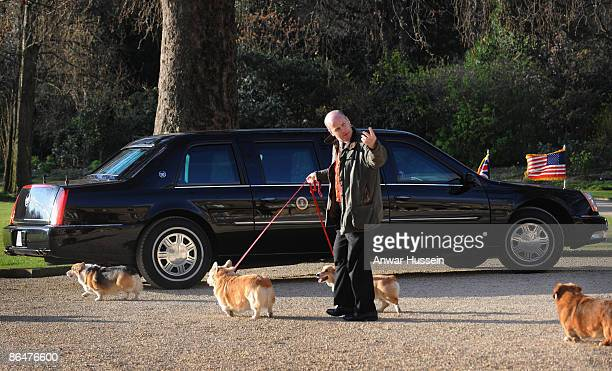 Queen Elizabeth II's corgis walk past US President Obama's car in the grounds of Buckingham Palace while he has an audience with The Queen on April 1...