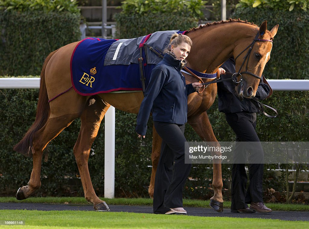 Ascot Races : News Photo