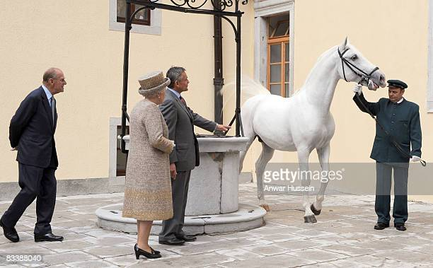 Queen Elizabeth ll receives a rare Lipizzaner horse when she visits Lipica Stud on the second day of a State Visit to Slovenia on October 22 2008 in...