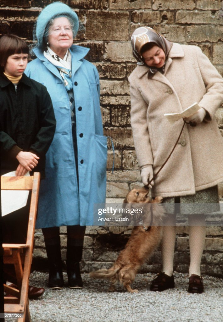 Queen Elizabeth ll, standing with the Queen Mother and Lady Sarah Armstrong-Jones (now Sarah Chatto), pets one of her favourite dogs, a dorgi which is a cross between a corgi and a dachshund, at the Badminton Horse Trials in April 1976.
