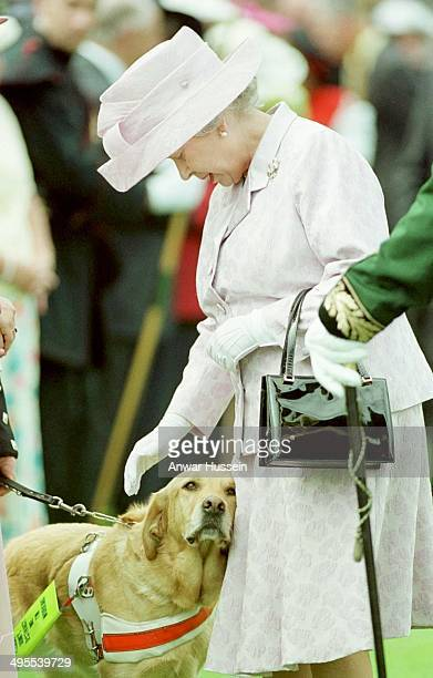 Queen Elizabeth ll strokes a guide dig during a garden party at Holyrood Palace on July 06, 1999 in Edinburgh, Scotland.