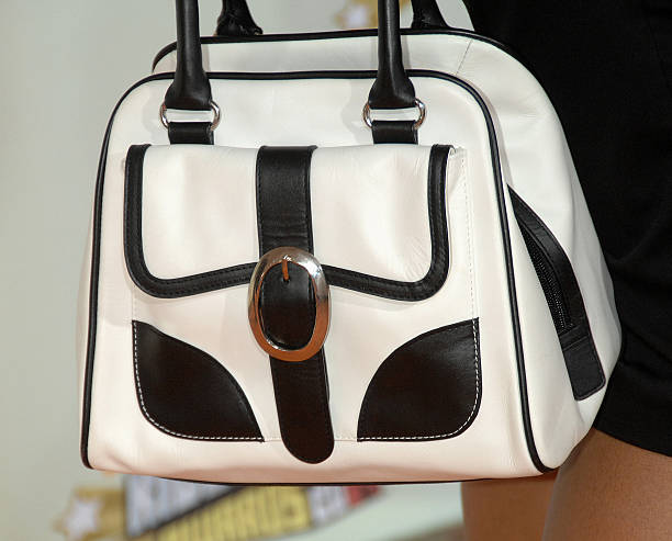 Queen Latifah Purse Fashion Arrives At The 20th Annual Kids Choice Awards Held