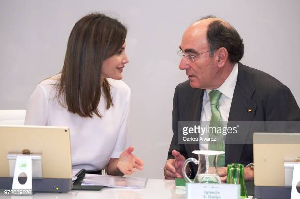 Queen Letizia of Spain and Chairman and CEO of Iberdrola Jose Ignacio Sanchez Galan attend a meeting with FAD Foundation members at Iberdrola on June...