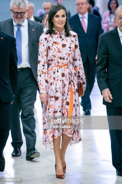 "Queen Letizia of Spain arrives at Prado Museum before the inauguration of the the exhibition 'Solo la voluntad me sobra Dibujos de Goya"" on the..."