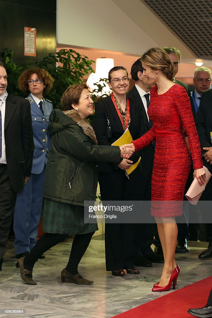 Queen Letizia of Spain (bag detail) arrives at the FAO headquarter for the Second International Conference on Nutrition on November 20, 2014 in Rome, Italy.
