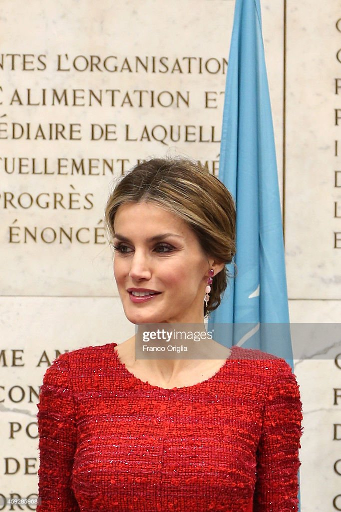 Queen Letizia of Spain arrives at the FAO headquarter for the Second International Conference on Nutrition on November 20, 2014 in Rome, Italy.
