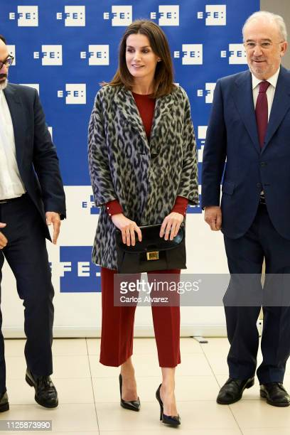 Queen Letizia of Spain arrives at the 'Fundeu BBVA' Foundation on January 29 2019 in Madrid Spain