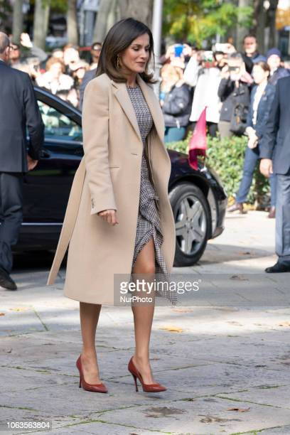 Queen Letizia of Spain arrives at the inaugural act of the bicentennial of the Prado Museum on November 19, 2018 in Madrid, Spain