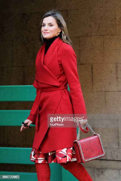 Queen Letizia of Spain arrives for a meeting at the AECC on December 21, 2017 in Madrid, Spain.