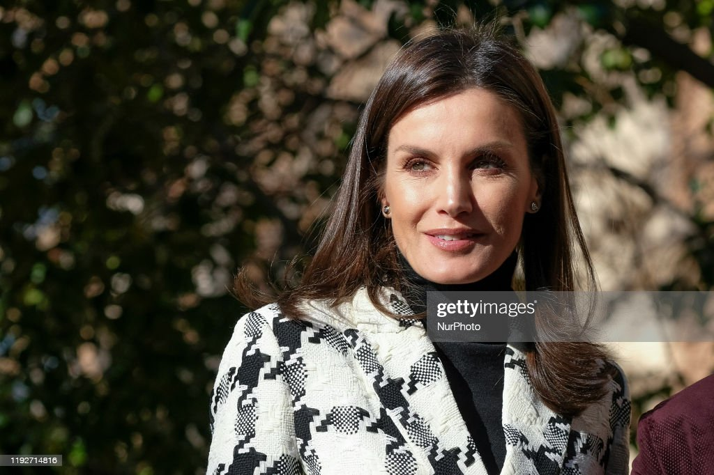 Queen Letizia Of Spain Arrives To FEDER Headquarters : Foto jornalística
